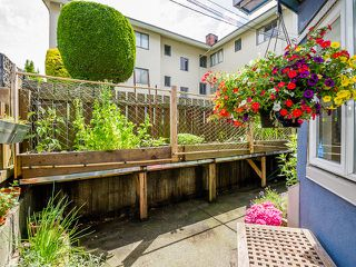 Photo 3: 104 2333 ETON Street in Vancouver: Hastings Condo for sale (Vancouver East)  : MLS®# R2083404