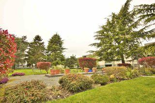 "Photo 16: 113 3451 SPRINGFIELD Drive in Richmond: Steveston North Condo for sale in ""ADMIRAL COURT"" : MLS®# R2216857"
