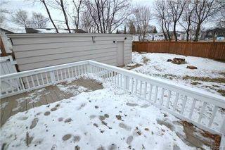 Photo 19: 230 Albany Street in Winnipeg: Bruce Park Residential for sale (5E)  : MLS®# 1802882