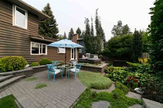 Photo 27: 17 Berrymore Drive: St. Albert House for sale : MLS®# E4139838
