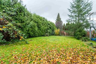 Photo 20: 24873 119 Avenue in Maple Ridge: Websters Corners House for sale : MLS®# R2342240