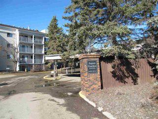 Main Photo: 303 4404 122 Street in Edmonton: Zone 16 Condo for sale : MLS®# E4150961