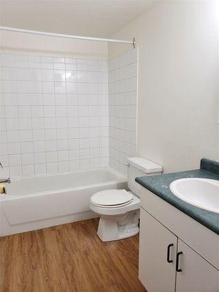 Photo 13: 104 9120 106 Avenue in Edmonton: Zone 13 Condo for sale : MLS®# E4152572