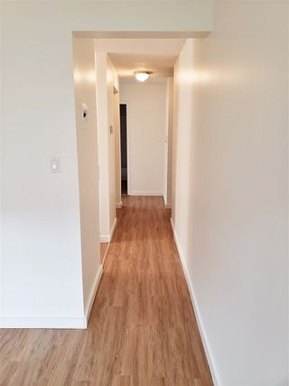 Photo 10: 104 9120 106 Avenue in Edmonton: Zone 13 Condo for sale : MLS®# E4152572