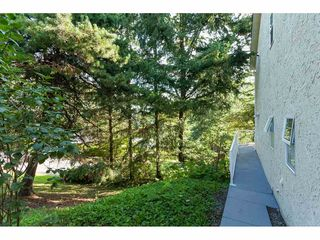 """Photo 17: 24 3292 ELMWOOD Drive in Abbotsford: Central Abbotsford Townhouse for sale in """"Sequestra Estates"""" : MLS®# R2396879"""