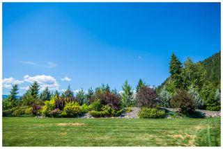 Photo 97: 3630 McBride Road in Blind Bay: McArthur Heights House for sale (Shuswap Lake)  : MLS®# 10204778