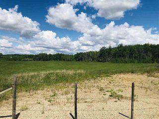 Photo 10: 14-51315 RR262 Acres: Rural Parkland County Rural Land/Vacant Lot for sale : MLS®# E4200477