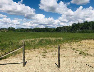 Photo 12: 14-51315 RR262 Acres: Rural Parkland County Rural Land/Vacant Lot for sale : MLS®# E4200477