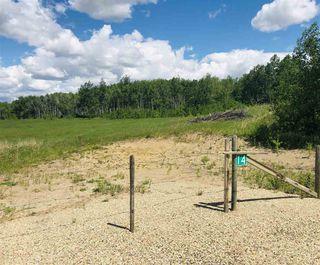 Photo 11: 14-51315 RR262 Acres: Rural Parkland County Rural Land/Vacant Lot for sale : MLS®# E4200477