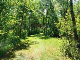 Photo 3: 14-51315 RR262 Acres: Rural Parkland County Rural Land/Vacant Lot for sale : MLS®# E4200477