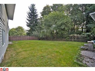 Photo 10: 11310 Surrey Road in Surrey: Bolivar Heights House for sale : MLS®# F1224105