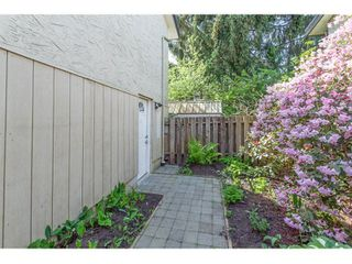 Photo 20: 11771 GRAVES Street in Maple Ridge: Southwest Maple Ridge House for sale : MLS®# R2059887