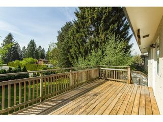 Photo 17: 11771 GRAVES Street in Maple Ridge: Southwest Maple Ridge House for sale : MLS®# R2059887