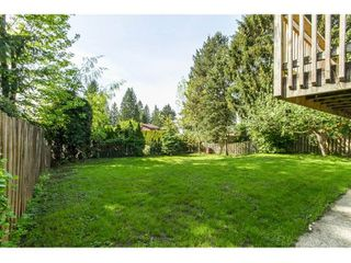 Photo 19: 11771 GRAVES Street in Maple Ridge: Southwest Maple Ridge House for sale : MLS®# R2059887