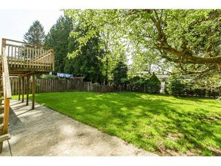 Photo 18: 11771 GRAVES Street in Maple Ridge: Southwest Maple Ridge House for sale : MLS®# R2059887