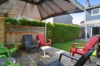 Photo 19: 2130 WINSTON Court in Langley: Willoughby Heights House for sale : MLS®# R2059726