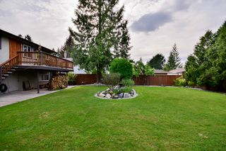 Photo 45: 20801 MCFARLANE Avenue in Maple Ridge: Southwest Maple Ridge House for sale : MLS®# R2065058