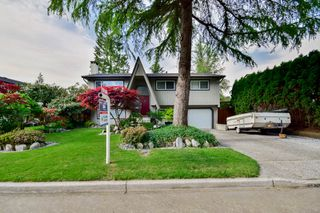 Photo 4: 20801 MCFARLANE Avenue in Maple Ridge: Southwest Maple Ridge House for sale : MLS®# R2065058