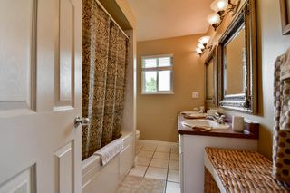 Photo 26: 20801 MCFARLANE Avenue in Maple Ridge: Southwest Maple Ridge House for sale : MLS®# R2065058