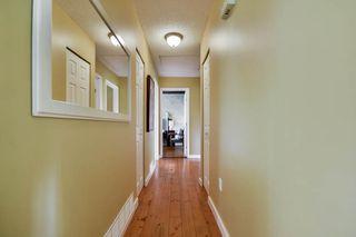 Photo 24: 20801 MCFARLANE Avenue in Maple Ridge: Southwest Maple Ridge House for sale : MLS®# R2065058