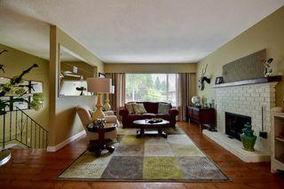 Photo 12: 20801 MCFARLANE Avenue in Maple Ridge: Southwest Maple Ridge House for sale : MLS®# R2065058