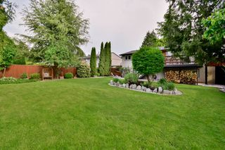 Photo 47: 20801 MCFARLANE Avenue in Maple Ridge: Southwest Maple Ridge House for sale : MLS®# R2065058