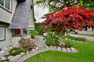 Photo 7: 20801 MCFARLANE Avenue in Maple Ridge: Southwest Maple Ridge House for sale : MLS®# R2065058