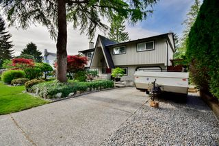 Photo 6: 20801 MCFARLANE Avenue in Maple Ridge: Southwest Maple Ridge House for sale : MLS®# R2065058
