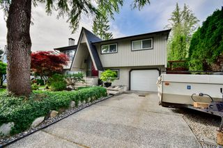 Photo 5: 20801 MCFARLANE Avenue in Maple Ridge: Southwest Maple Ridge House for sale : MLS®# R2065058