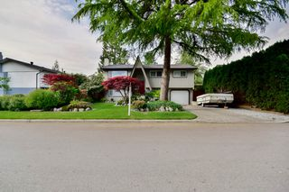 Photo 8: 20801 MCFARLANE Avenue in Maple Ridge: Southwest Maple Ridge House for sale : MLS®# R2065058