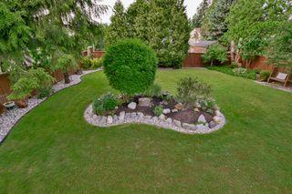 Photo 41: 20801 MCFARLANE Avenue in Maple Ridge: Southwest Maple Ridge House for sale : MLS®# R2065058