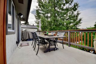 Photo 40: 20801 MCFARLANE Avenue in Maple Ridge: Southwest Maple Ridge House for sale : MLS®# R2065058