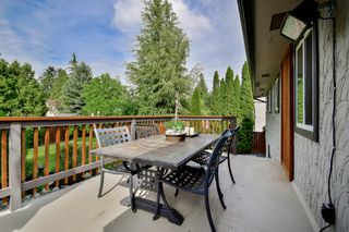 Photo 39: 20801 MCFARLANE Avenue in Maple Ridge: Southwest Maple Ridge House for sale : MLS®# R2065058