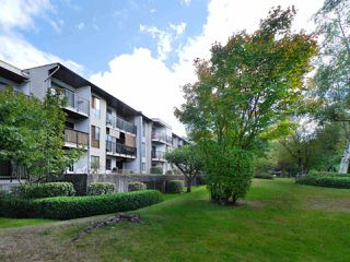 "Main Photo: 105 9952 149 Street in Surrey: Guildford Condo for sale in ""Tall Timbers"" (North Surrey)  : MLS®# R2107429"