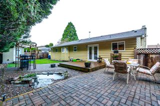 Photo 16: 20782 52 Avenue in Langley: Langley City House for sale : MLS®# R2122376