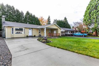 Photo 1: 20782 52 Avenue in Langley: Langley City House for sale : MLS®# R2122376
