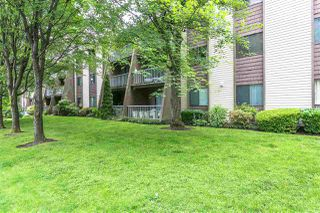 """Photo 15: 205 3921 CARRIGAN Court in Burnaby: Government Road Condo for sale in """"CARRIGAN COURT"""" (Burnaby North)  : MLS®# R2197043"""