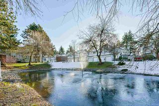 """Photo 17: 106 10038 150 Street in Surrey: Guildford Condo for sale in """"Mayfield Green"""" (North Surrey)  : MLS®# R2229224"""