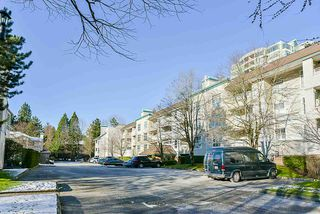 """Photo 2: 106 10038 150 Street in Surrey: Guildford Condo for sale in """"Mayfield Green"""" (North Surrey)  : MLS®# R2229224"""