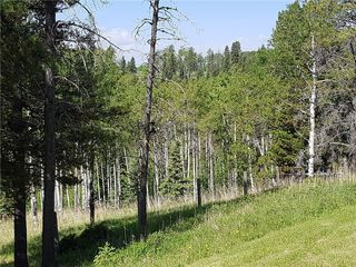 Photo 43: 52103 TWP Road 283A in Rural Rocky View County: Rural Rocky View MD Detached for sale : MLS®# C4202393
