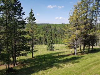 Photo 41: 52103 TWP Road 283A in Rural Rocky View County: Rural Rocky View MD Detached for sale : MLS®# C4202393