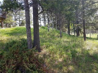Photo 11: 52103 TWP Road 283A in Rural Rocky View County: Rural Rocky View MD Detached for sale : MLS®# C4202393