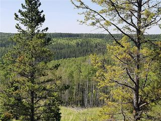 Photo 4: 52103 TWP Road 283A in Rural Rocky View County: Rural Rocky View MD Detached for sale : MLS®# C4202393