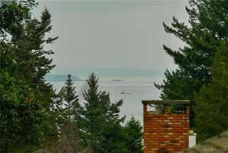 Photo 24: 4520 Balmacarra Rd in VICTORIA: SE Gordon Head Single Family Detached for sale (Saanich East)  : MLS®# 809905