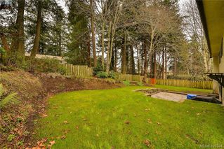 Photo 20: 4520 Balmacarra Rd in VICTORIA: SE Gordon Head Single Family Detached for sale (Saanich East)  : MLS®# 809905