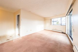 "Photo 6: 309 2080 MAPLE Street in Vancouver: Kitsilano Condo for sale in ""MAPLE MANOR"" (Vancouver West)  : MLS®# R2356218"