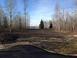 Photo 4: 406 Duncan Road: Rural Barrhead County Rural Land/Vacant Lot for sale : MLS®# E4154945