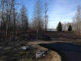 Photo 5: 406 Duncan Road: Rural Barrhead County Rural Land/Vacant Lot for sale : MLS®# E4154945
