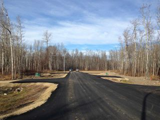 Photo 3: 406 Duncan Road: Rural Barrhead County Rural Land/Vacant Lot for sale : MLS®# E4154945