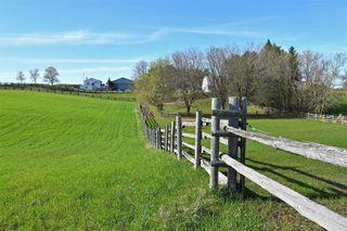 Photo 16: 348536 15 Sideroad in Mono: Rural Mono Property for sale : MLS®# X4465634